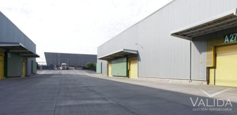 Galpón arriendo 1.624 m2    AV GENERAL VELASQUEZ / RUTA 5